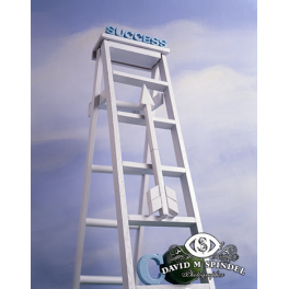 Climb The Ladder To Success